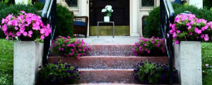 front steps with flowers